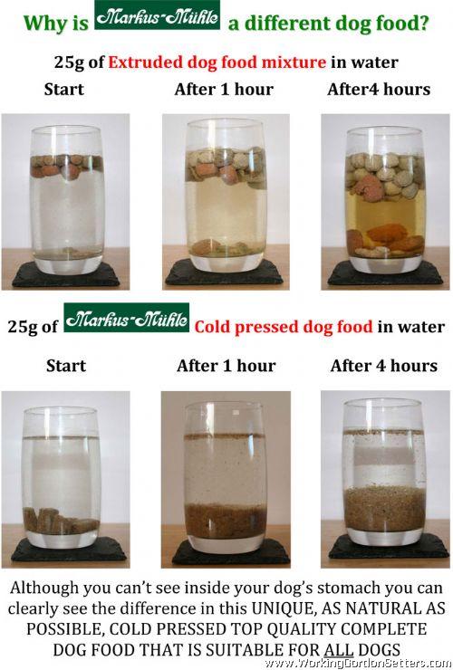Best Healthy Dog Food Uk